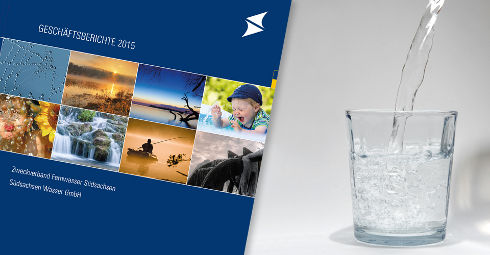 Geschäftsbericht SSW/ZVS - Design und Layout